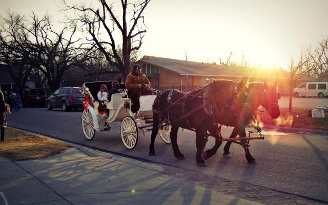 city of rose hill christmas carriage rides rh ks kansas